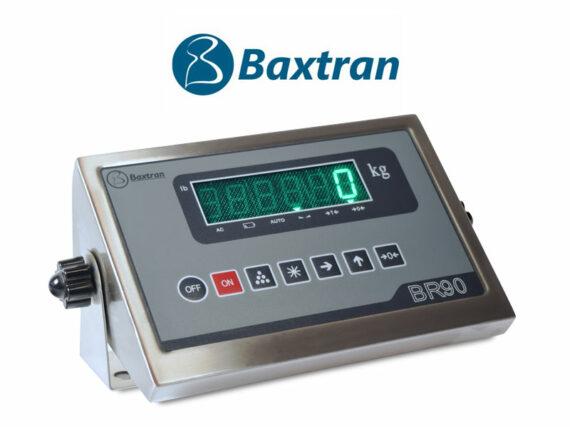 Visor indicador Baxtran BR90 en acero inoxidable